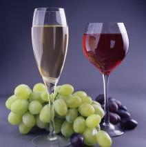 Дегустация вин в ресторане Думка