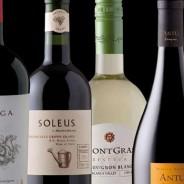 Дегустация чилийских вин в ресторане Думка