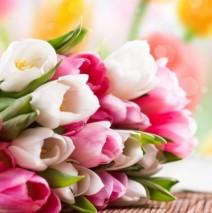 Поздравляем с 8-м марта!